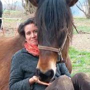 Un moment de complicité avec les chevaux