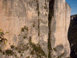 olivier-o-Moniteur d'Escalade -1