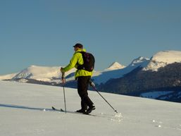 vincent-t-Guide de haute montagne-2