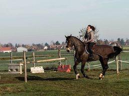 aliénor-l-Moniteur d'équitation-3