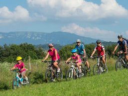 francis-d-Moniteur vélo - VTT-3