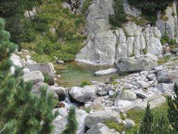 marie-pierre-f-Accompagnateur en Montagne -1