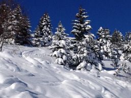 françois-s-Moniteur de ski-3