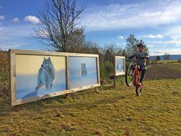 Rando VTT dans les Vosges