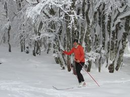 sylvie-t-Moniteur de ski-1