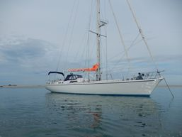 pierre-l-Skipper Professionnel -3