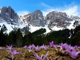 ferran-u-Guide de haute montagne-6