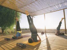loic-b-Professeur de Yoga