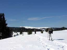 Skieur dans le Vercors