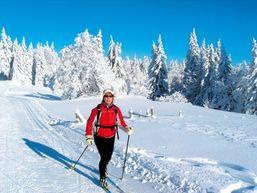 Skieuse dans le Vercors