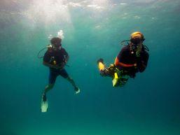 Plongée en bouteille dans l'immensité marine