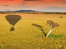 Safari en Montgolfière