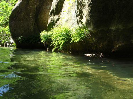 nicolas-r-Moniteur Canyoning et Escalade-9