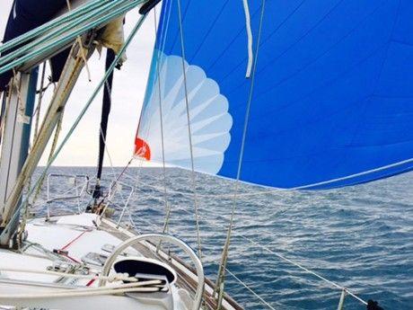 olivier-t-Skipper Professionnel -4