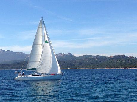 arthur-s-Skipper Professionnel -6