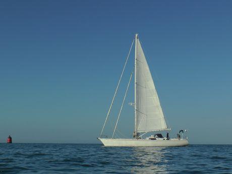 pierre-l-Skipper Professionnel -4