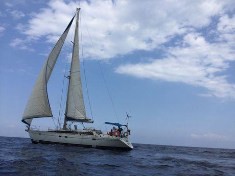 priscillia et brice-d-Skipper Professionnel -15
