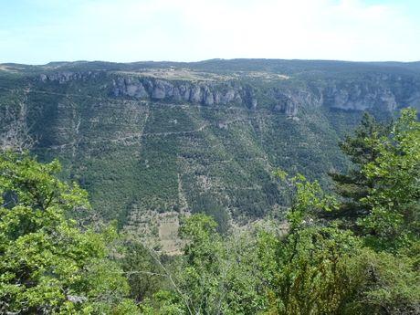 julien-m-Accompagnateur en Montagne -12