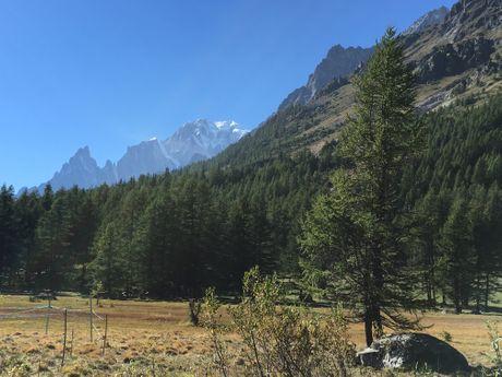 Panorama sur le Val Ferret