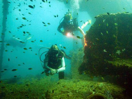 plongée bouteille accompagné de nombreux poissons