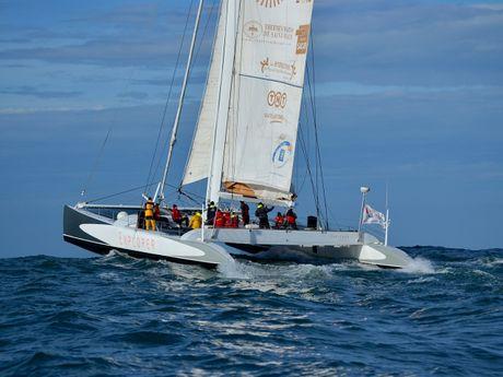 Sorties course au large à bord d'un maxi-catamaran