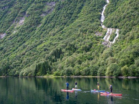 Balade en Paddle Fjord