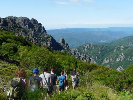 Agence multi-activités montagne