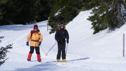 Balades en douceurs à ski de fond-1