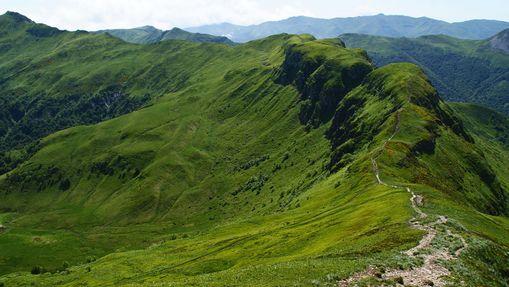 Rando-observation de la faune dans le Cantal-5