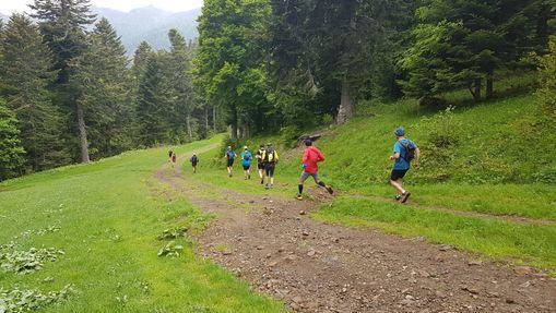 Stage initiation trail dans les Monts du Cantal