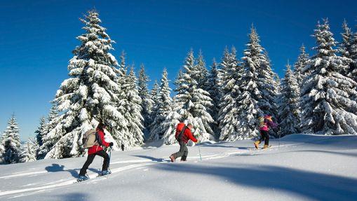 Raid hivernal dans les grands espaces du Jura