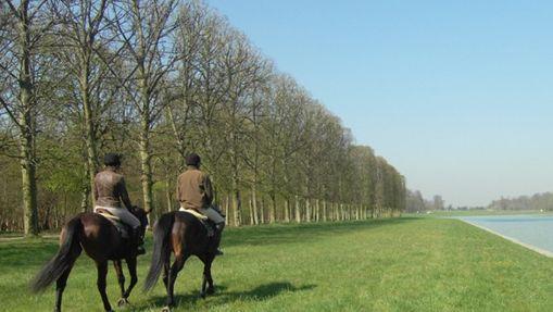 Balade - Parc de Versailles-2