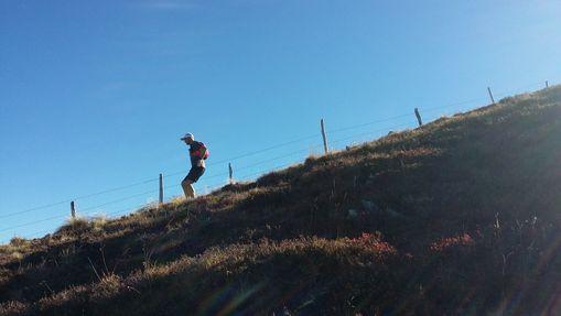 4j initiation au trail dans les Monts du Cantal-7