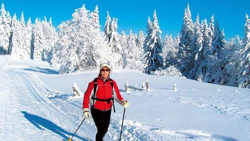 Itinérance de ski nordique dans le Vercors-1