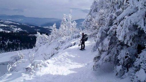 Randonneurs en raquettes dans les Vosges