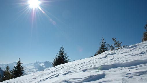 Pente recouverte de neige immaculée