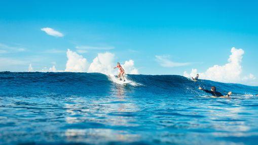 Un séjour incroyable au paradis des surfeurs -10