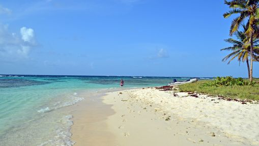 Croisière dans les Grenadines - Tout compris -12