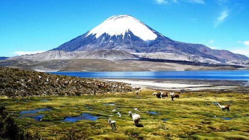 Ascension du Volcan Sajama (6542 m)-9
