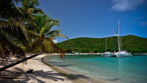 Croisière et plongée sous-marine aux Grenadines-11