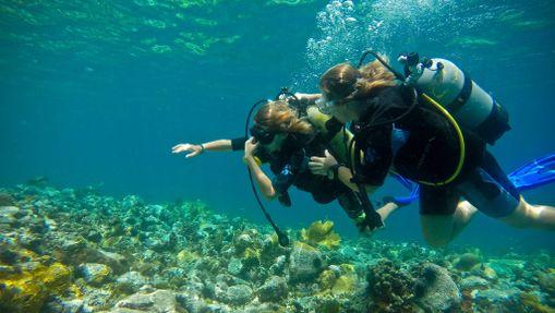Croisière et plongée sous-marine aux Grenadines-1