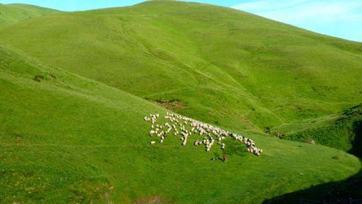 Tour de la Soule, région luxuriante du Pays Basque-5