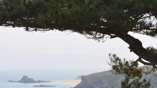 Stage yoga & méditation en Bretagne Sud