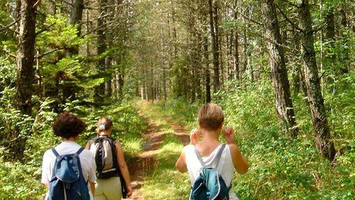 Stage yoga et randonnée sur les Monts d'Aubrac -6