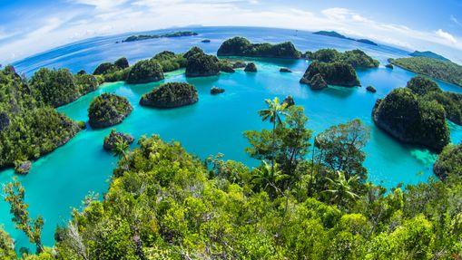 Croisière plongée dans l'archipel des Raja Ampat-10