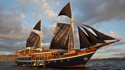 Croisière plongée dans l'Archipel des Raja Ampat-8