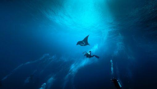 Croisière plongée 4 Atolls par la Route Nord -1