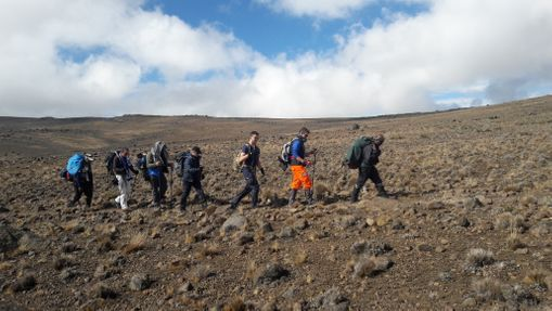 Ascension du Kilimandjaro - Voie Rongai 6 jours