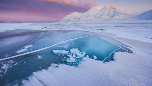 Croisière au Svalbard : Isfjord et côte Ouest