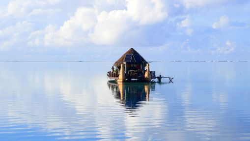 Polynesia Dream